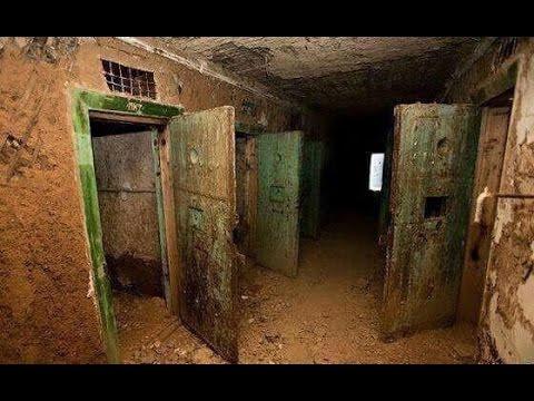 """كيف حول نظام بشار سجن تدمر إلى """"مذبح"""" للشعب السوري؟"""
