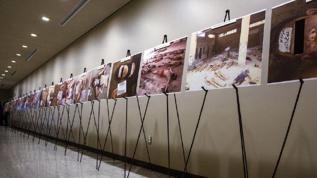27 ألف صورة تعذيب جديدة من «قيصر» السوري إلى القضاء الألماني