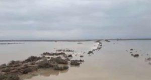 الأمطار الغزيرة تسبب فيضانات في ديرالزور ( صور + فيديو)