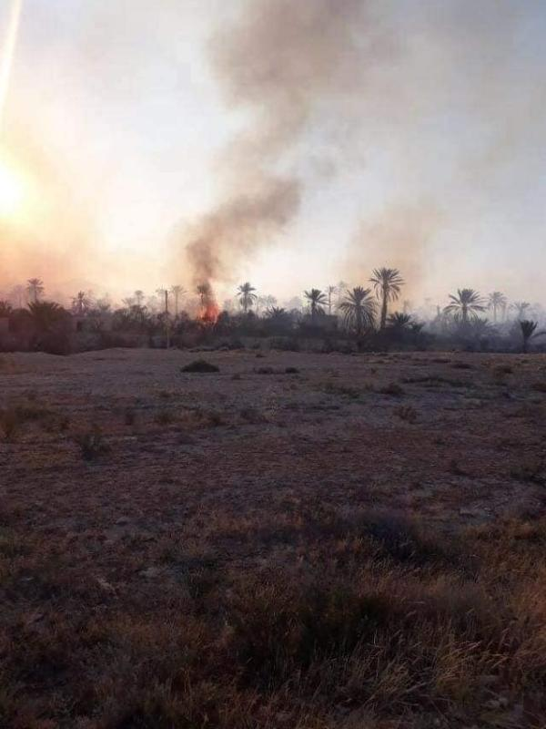 حرائق ضخمة تلتهم ما يقارب 120 بستان بمدينة تدمر